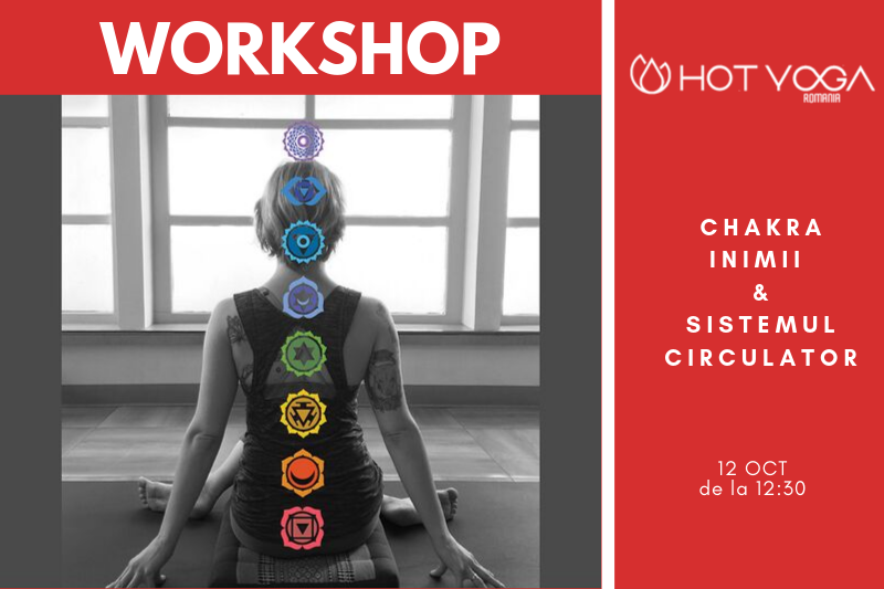 workshop-chakra-inimii-si-sistemul-circulator